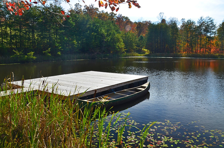 fall float dock.jpg