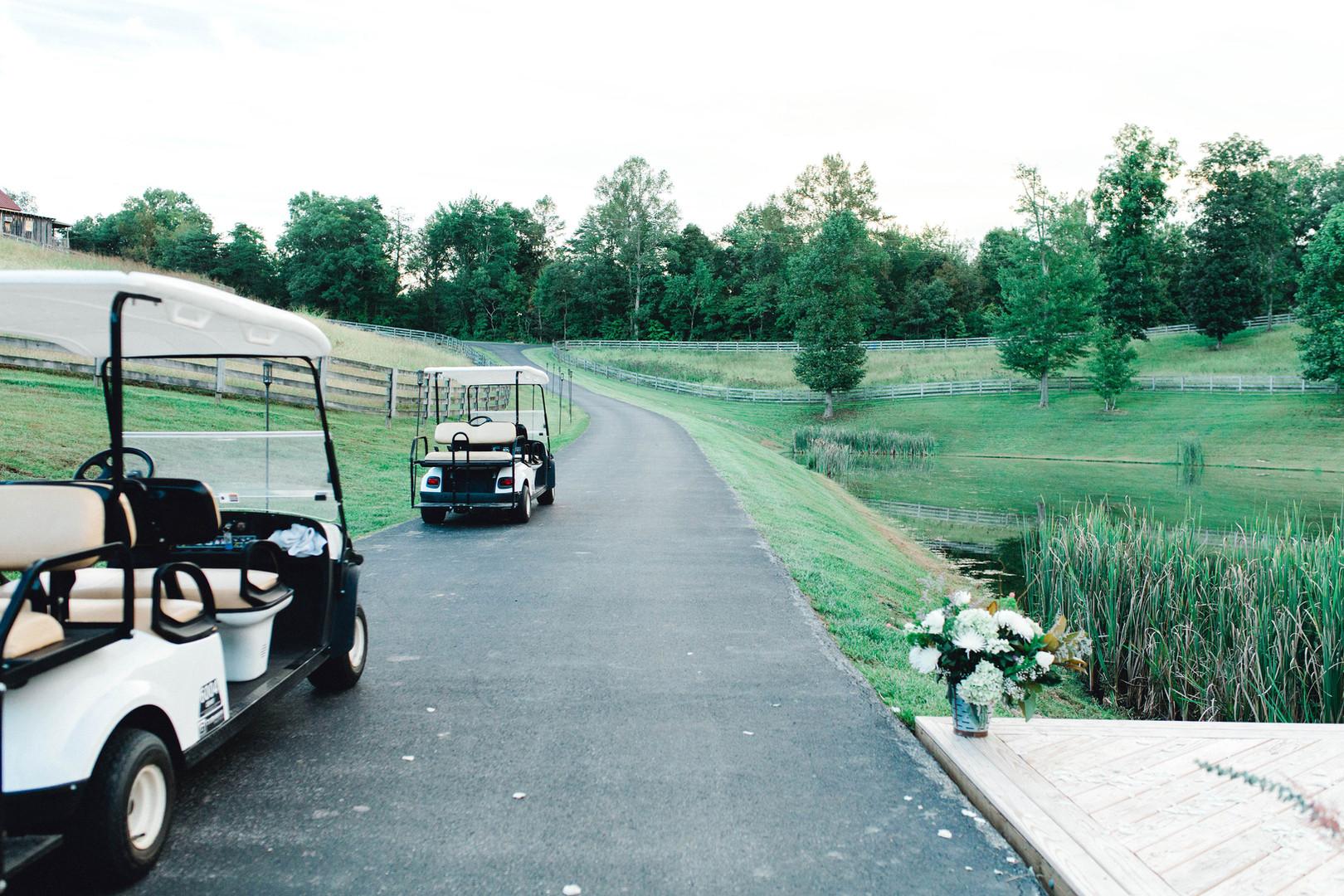 Golf cart shuttle