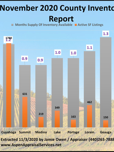 November County Inventory Report.jpg