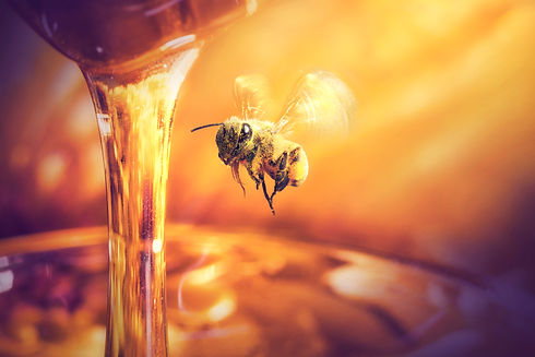 bee flying to Honey dripping in glass ja