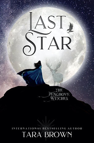 the last star ebook.jpg