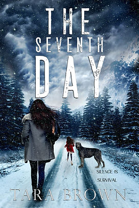 the seventh day ebook.jpg