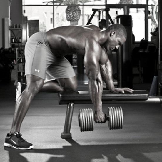 STARTER Workout Program
