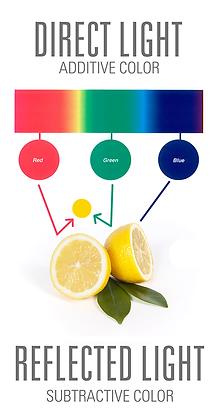 Direct-reflected-light-diagram750_edit.p
