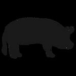 swine icon.png