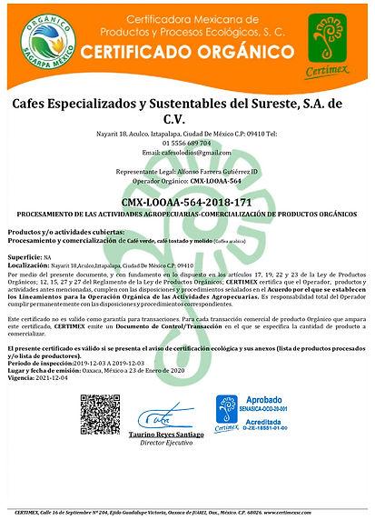 Certificado Cafes Especializados Looaa-2
