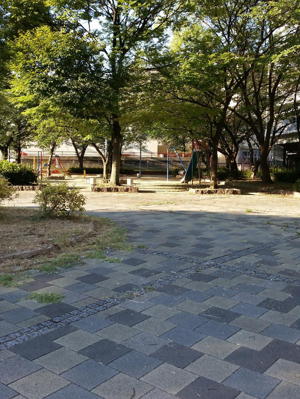 公園ラジオ体操