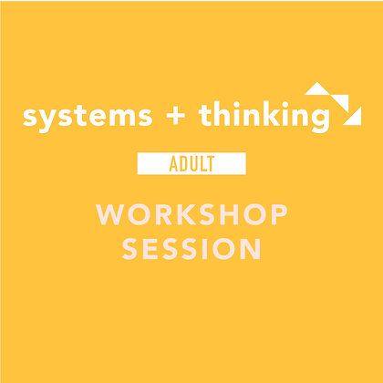 systems + thinking workshop session
