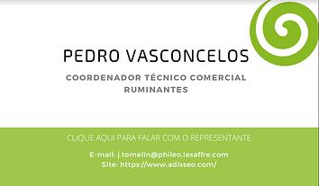 Cópia de Pedro Vasconcelos.png