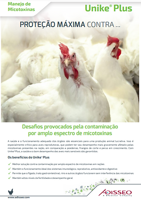 Frangos reprodutores.png