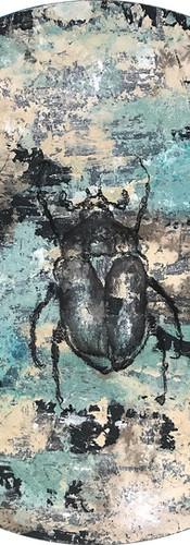 """""""Escarabajo"""""""