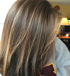 Hair Hilites.jpg