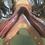 """Thumbnail: #358 Jefferies Elite 18"""""""