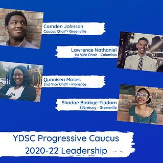 progressive caucus new.png