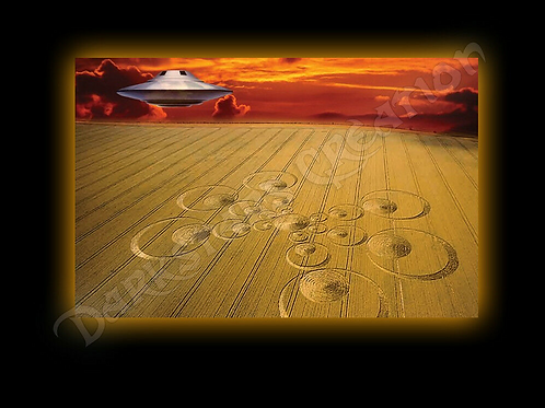 I Believe - Crop Circle with UFO!