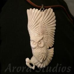 Incoming Owl