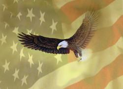 Patriot Spirit