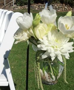 Tulip Dahlia Shells