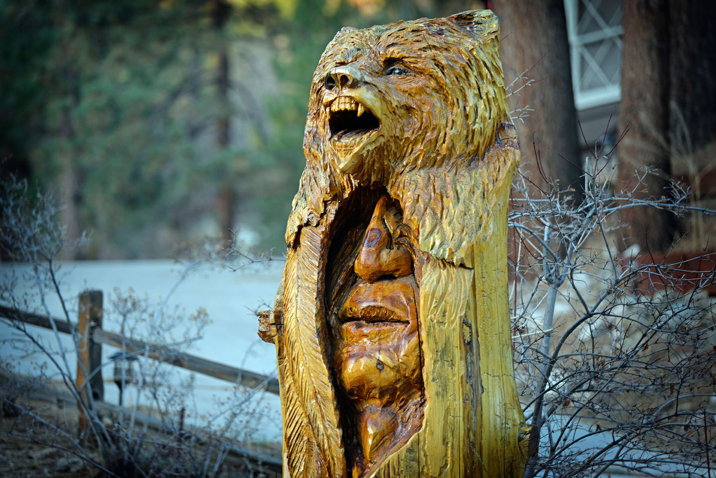 big bear totem