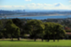 Get Married at Kate Session Park in San Diego
