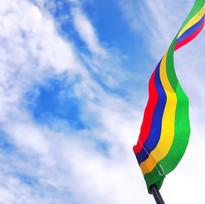 Flag - Shubham Beeharry.jpeg