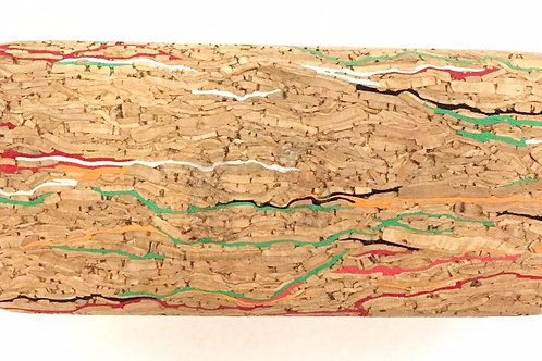 Men's Cork Hard Case
