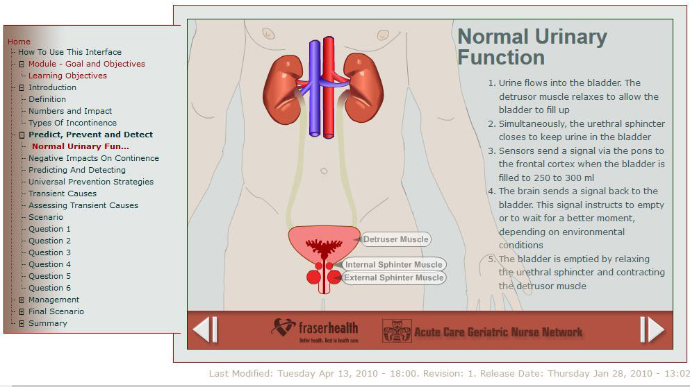 ACGNN Urinary Function