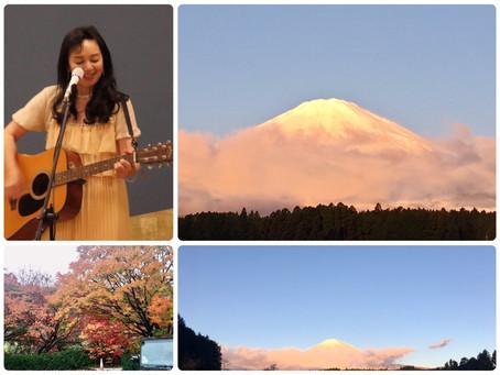 11月29日の富士山
