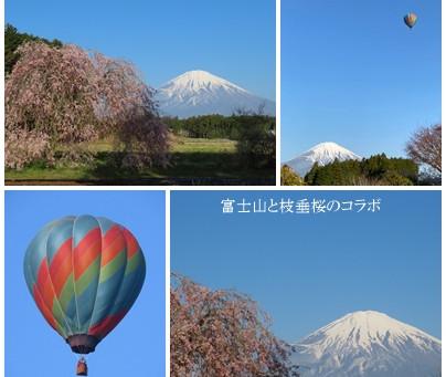2021年4月11日(日)富士山と気球