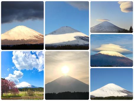 今年の富士山