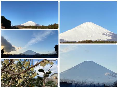 2月8日の富士山
