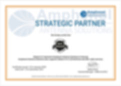 Amphenol Certificate Dekant.jpg