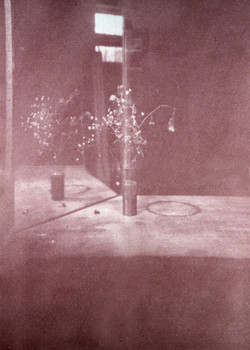 Bichromate still-life print.