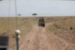 Safari in Maasai Mara
