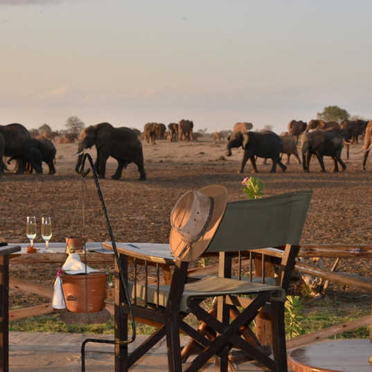 Satao Camp - Drink with a view