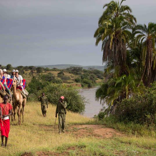 Loisaba Camel Trekking_2.jpg