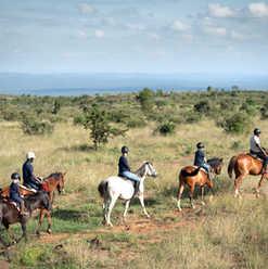 Loisaba Horse Riding.jpg