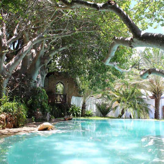 Peponi Hotel - The pool