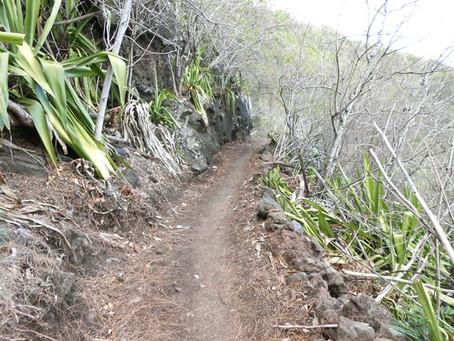Cap Bernard par le Sentier Pavé des rampes de La Montagne