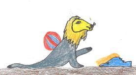 Der Seelöwe ist sehr verspielt und lässig.