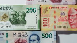ASÍ DESAPARECIÓ MILLONES EL PRIAN TRAVÉS DE LOS FIDEICOMISOS