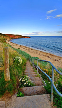 Roome Bay Beach by Gary McMeekin
