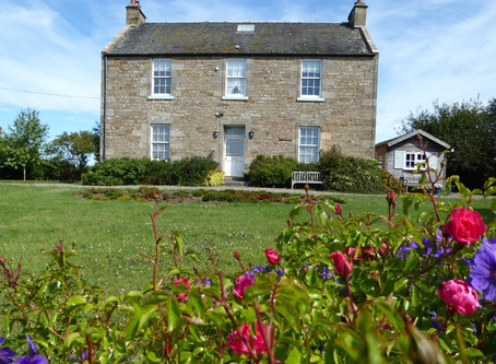 Local Business Features -  Troustrie House B&B