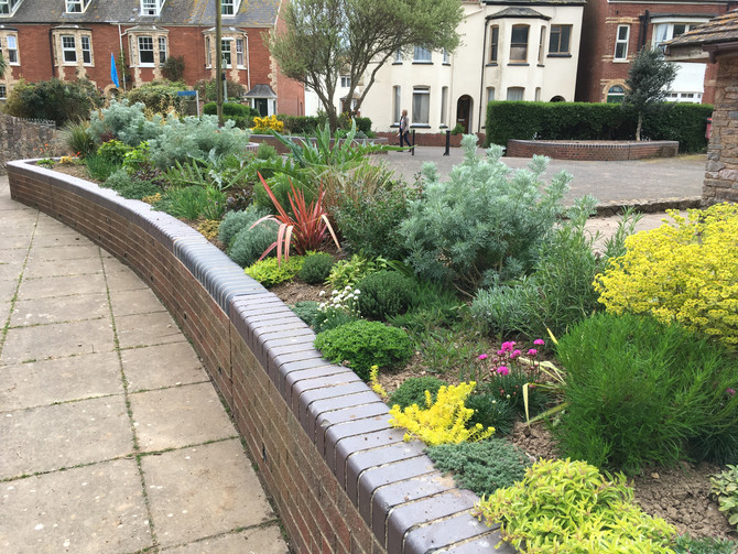 Sensory Garden Opens in Sidmouth