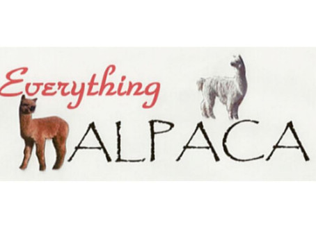Downtown Castle Rock Business Highlight: Everything Alpaca