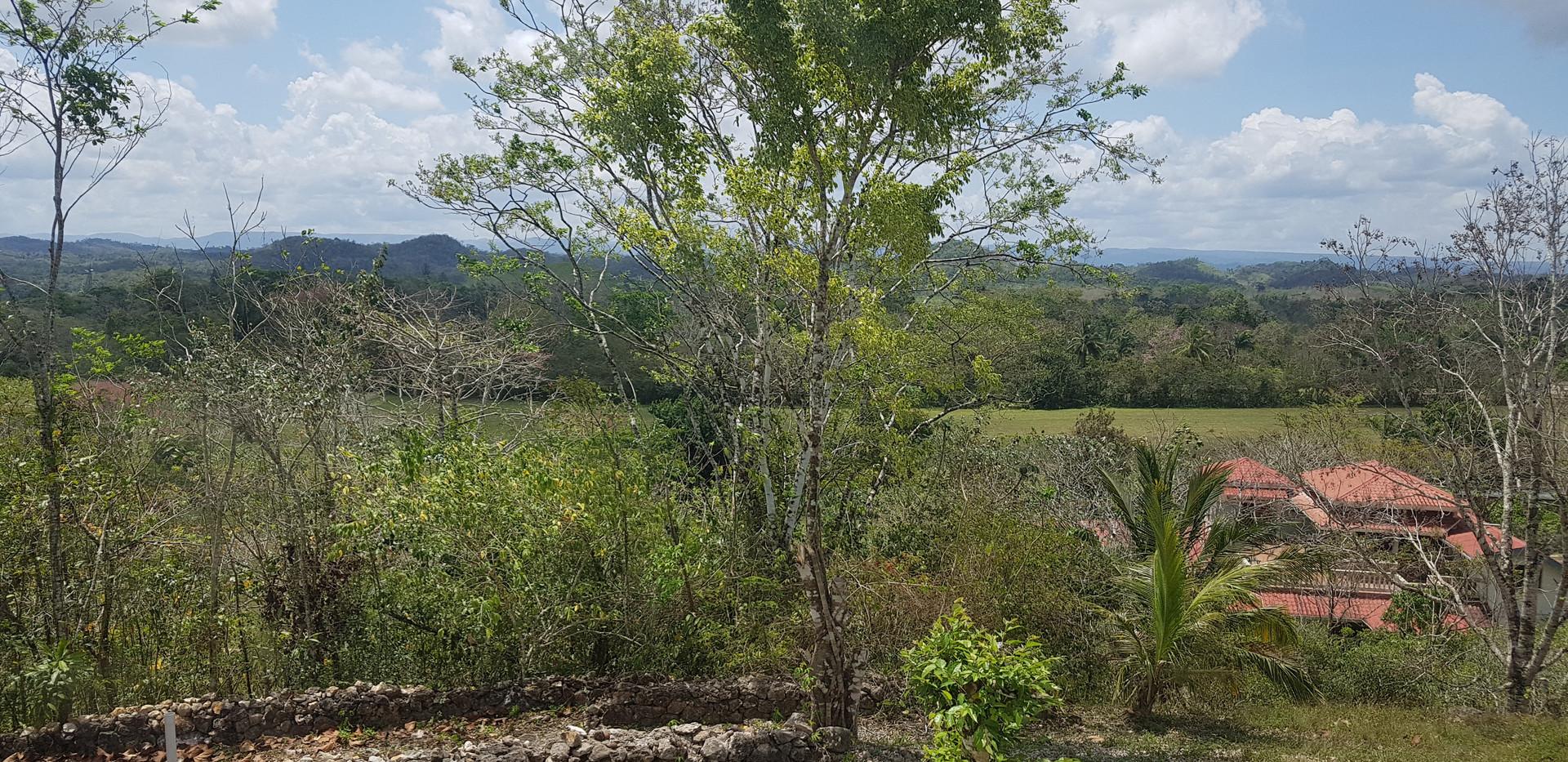 Hilltop View