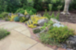 Professional landscape gardeners with precision and passion in London & Essex - Aspiring Landscapes