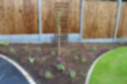 Fencing company in London offers a wide range of garden fences that are matched to your garden and requirements