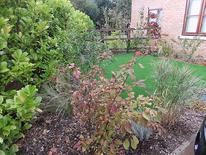 Garden planting services in London & Essex by landscape gardening company Aspiring Landscapes