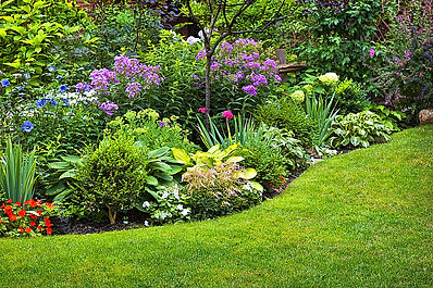 Planting and gardening services in London by landscape gardeners Aspiring Landscapes